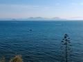 Piombino - Isola d'Elba