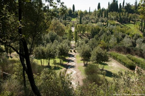 Bosco della Ragnaia