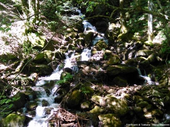 Cascata - Camaldoli