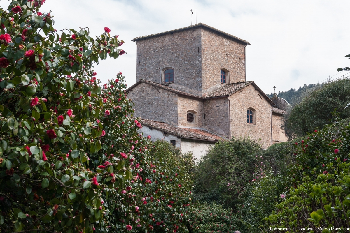 Panorama Sant'Andrea di Compito