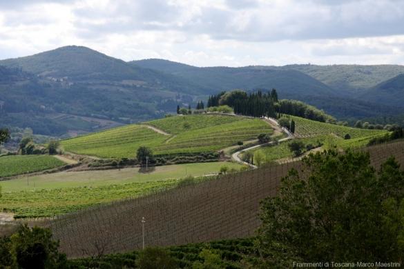 Veduta su Montevertine dal Castello d'Albola