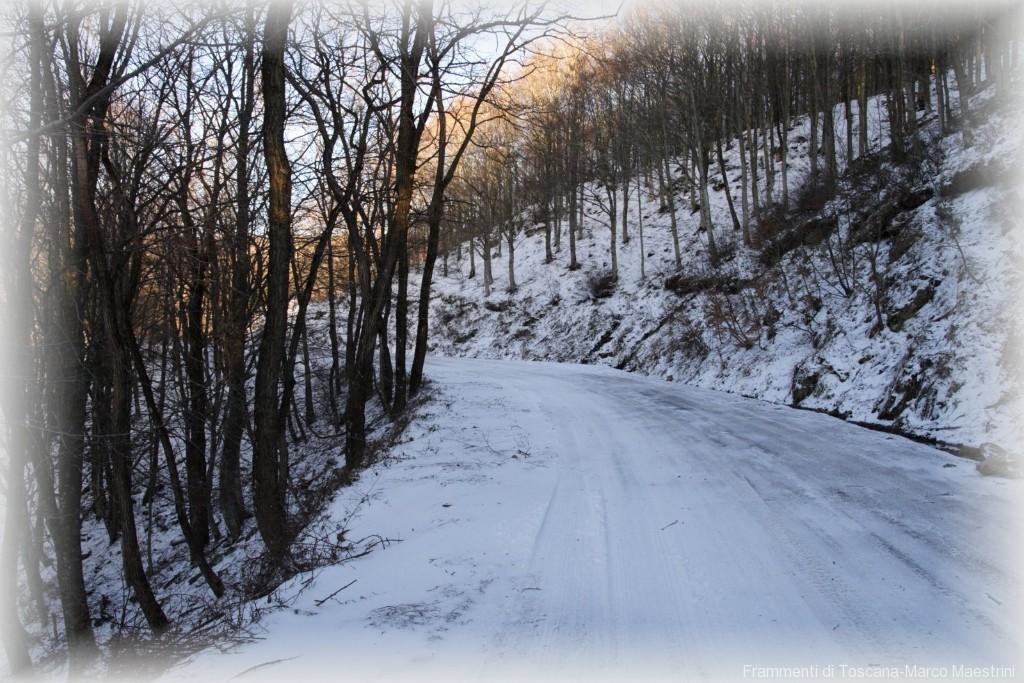 neve in Pratomagno